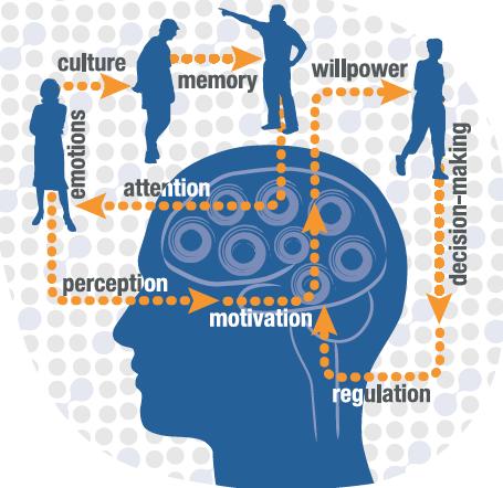 Neuroawareness_workshop